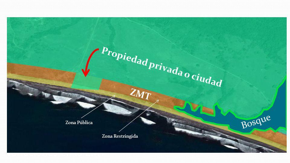 Variaciones en la ZMT ZMT Propiedad privada o ciudad Bosque Zona Pública Zona Restringida
