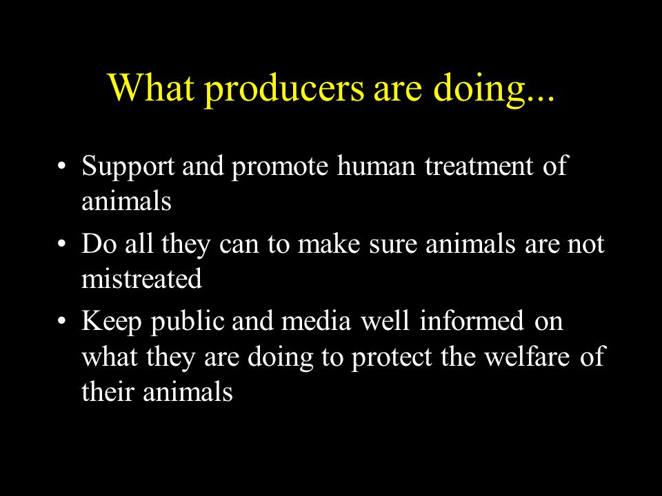 What producers are doing... Support and promote human treatment of animals Do all they can to make sure animals are not mistreated Keep public and med