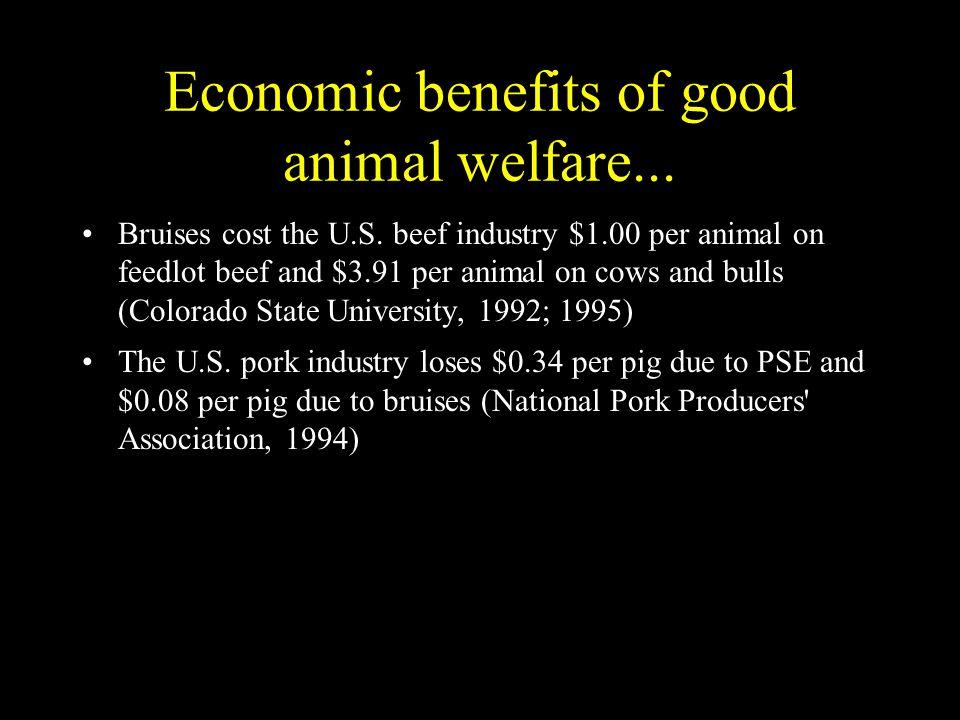 Economic benefits of good animal welfare...Bruises cost the U.S.