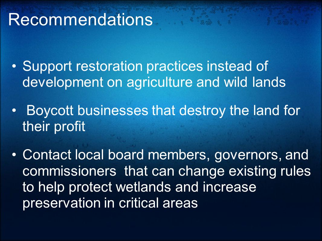 Recommendations Support restoration practices instead of development on agriculture and wild lands Boycott businesses that destroy the land for their profit Contact local board members, governors, and commissioners that can change existing rules to help protect wetlands and increase preservation in critical areas