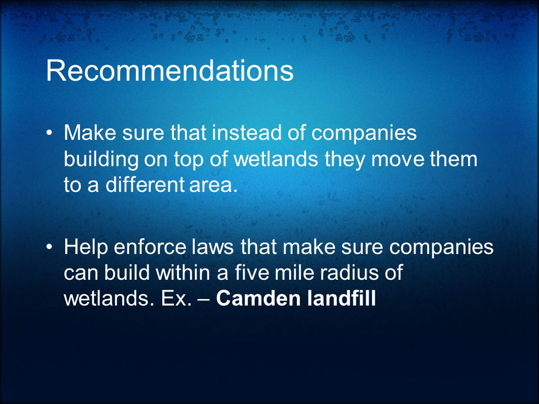 Recommendations Make sure that instead of companies building on top of wetlands they move them to a different area.