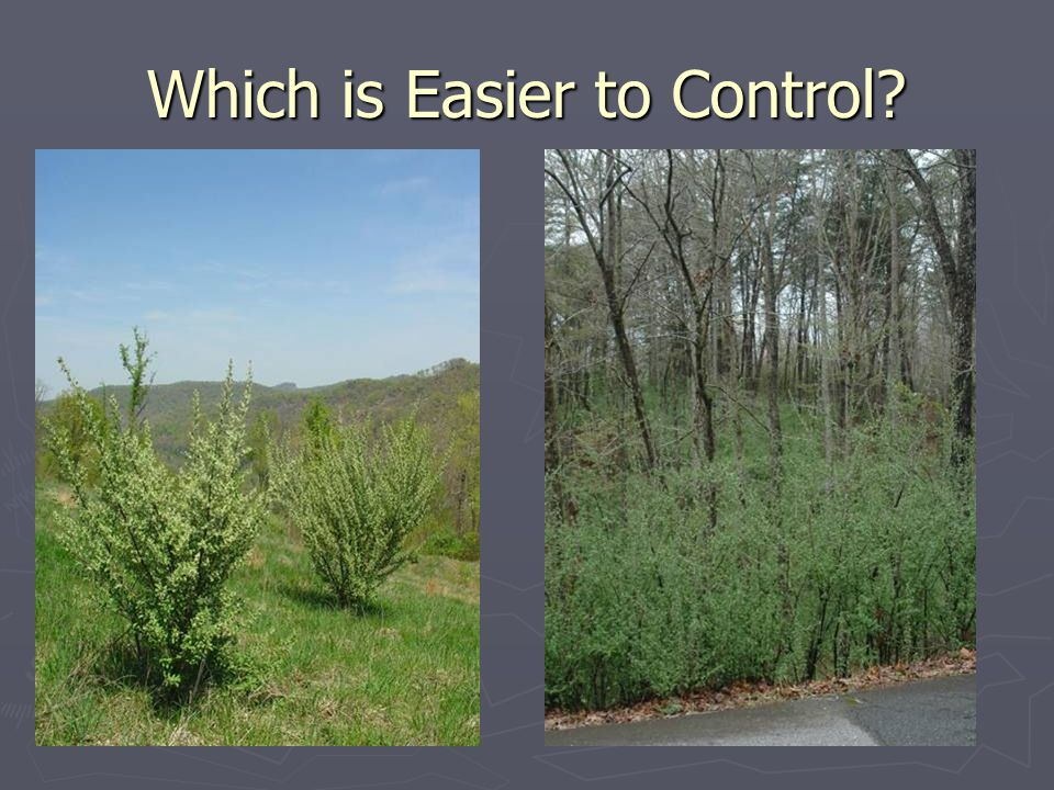 Which is Easier to Control?
