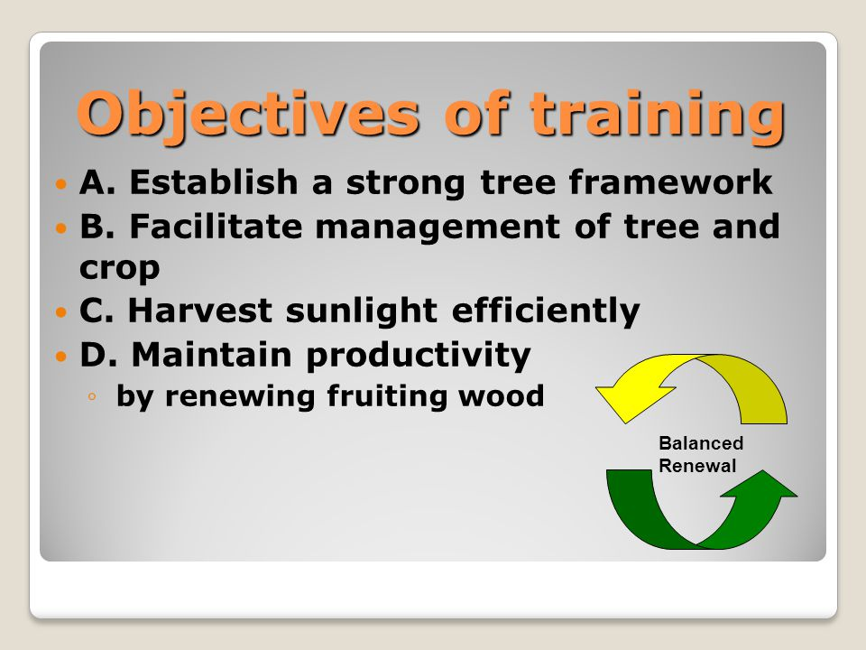 Objectives of training A. Establish a strong tree framework B.