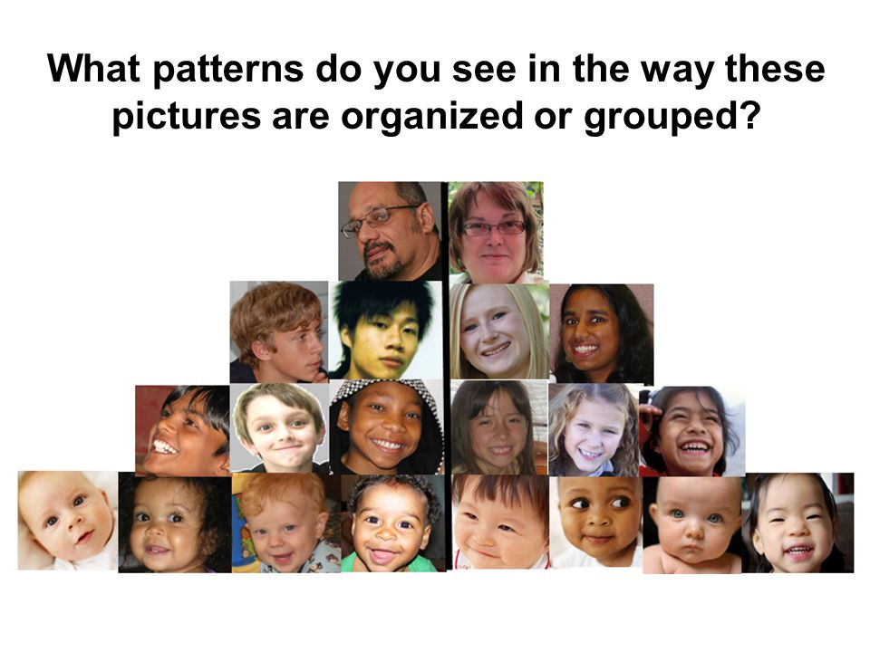 What patterns do you see in the way these pictures are organized or grouped?