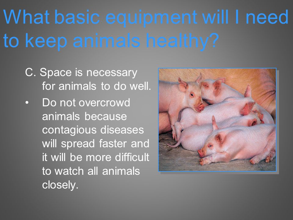 C. Space is necessary for animals to do well.