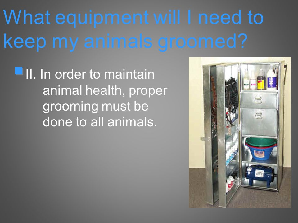 II. In order to maintain animal health, proper grooming must be done to all animals.