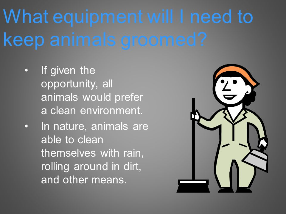 If given the opportunity, all animals would prefer a clean environment.