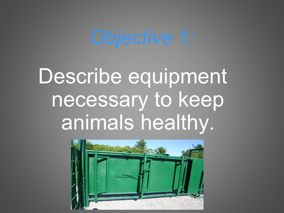 Objective 1: Describe equipment necessary to keep animals healthy.