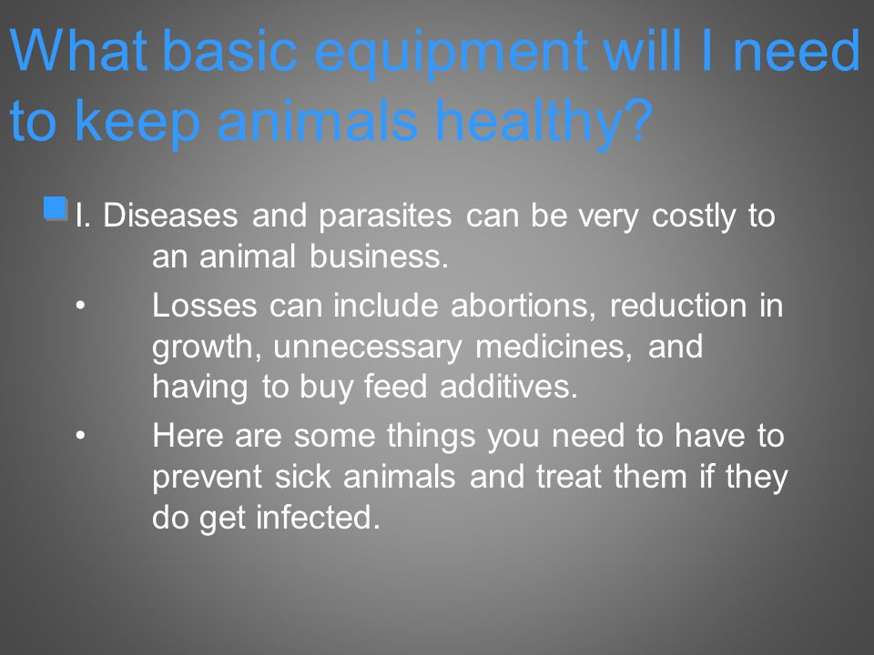 What basic equipment will I need to keep animals healthy.