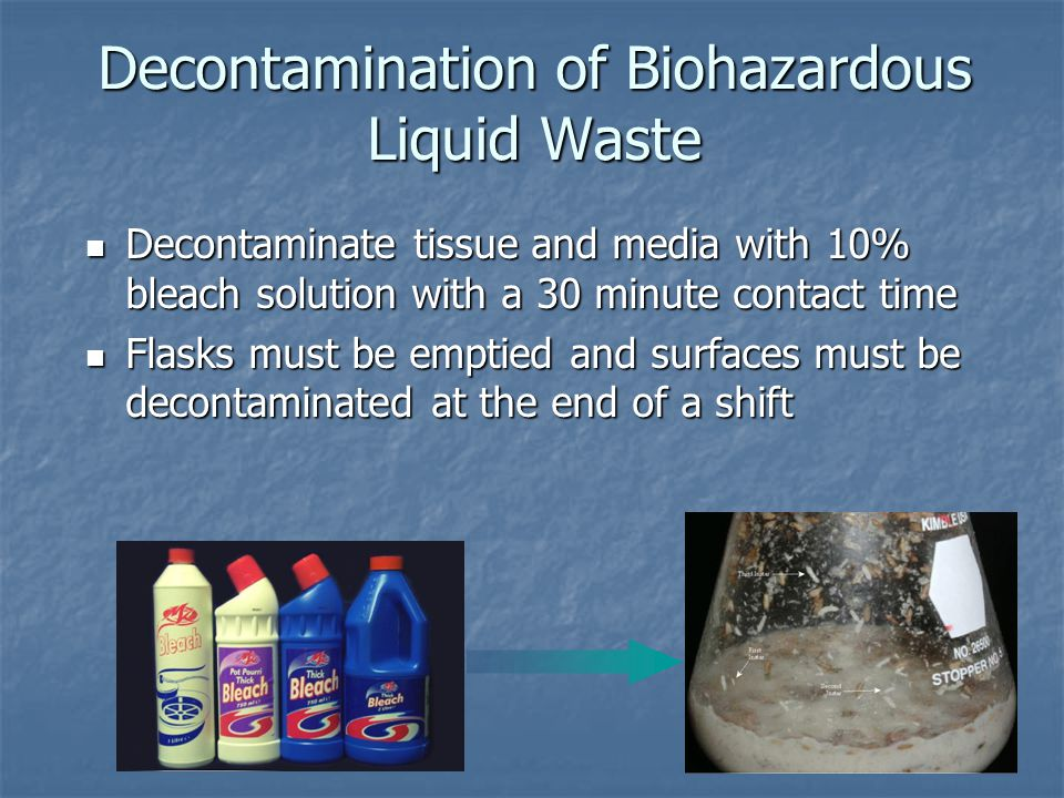 Decontamination of Biohazardous Liquid Waste Decontaminate tissue and media with 10% bleach solution with a 30 minute contact time Decontaminate tissue and media with 10% bleach solution with a 30 minute contact time Flasks must be emptied and surfaces must be decontaminated at the end of a shift Flasks must be emptied and surfaces must be decontaminated at the end of a shift