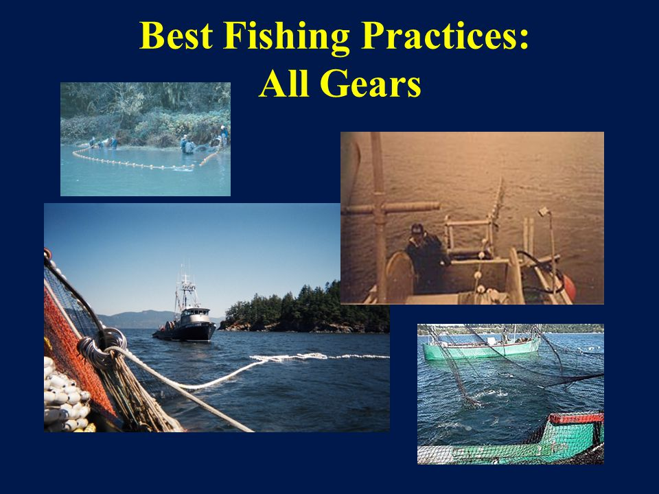 Best Fishing Practices: All Gears