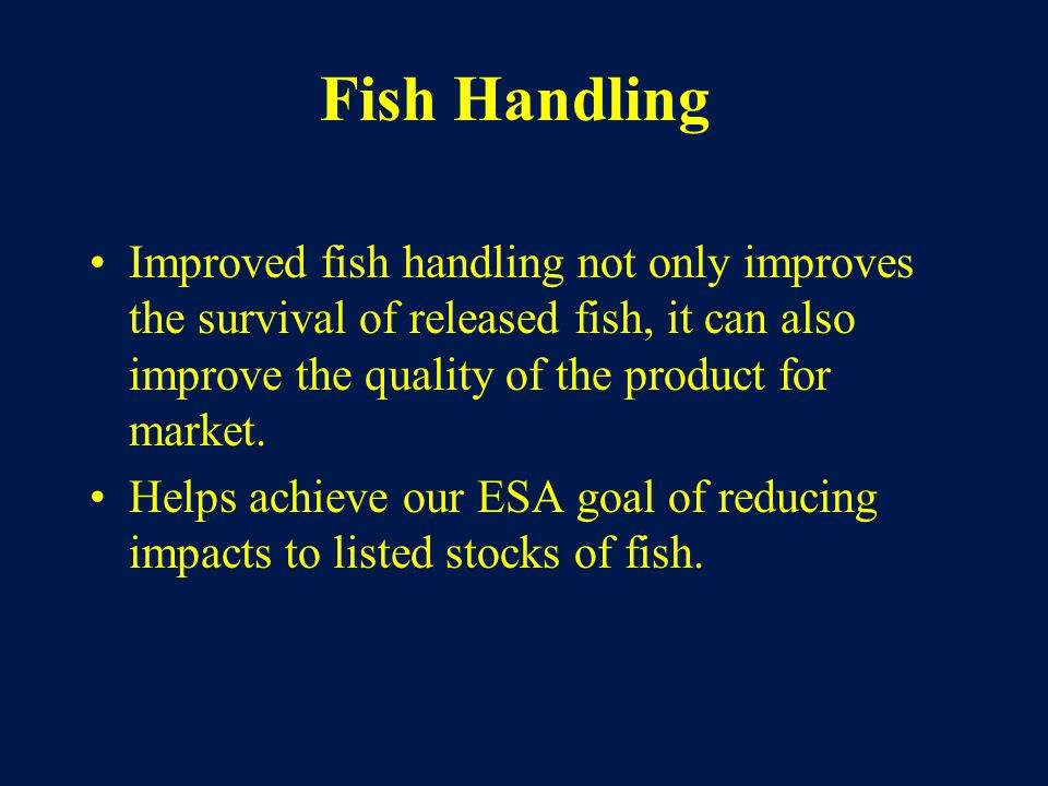 Fish Handling Improved fish handling not only improves the survival of released fish, it can also improve the quality of the product for market.