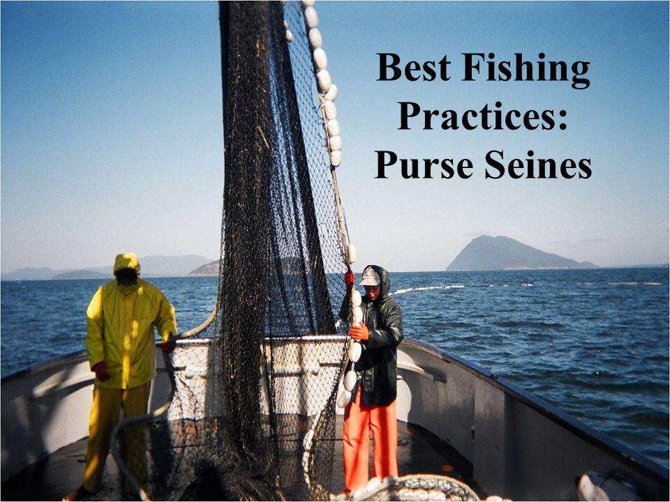 Best Fishing Practices: Purse Seines