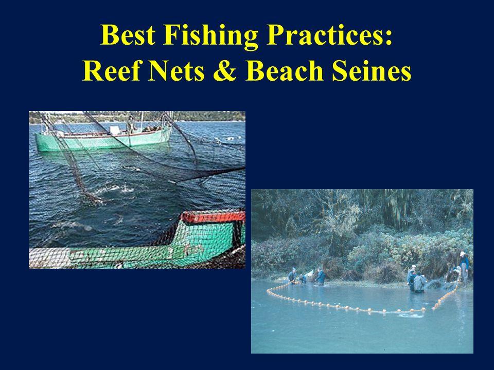 Best Fishing Practices: Reef Nets & Beach Seines