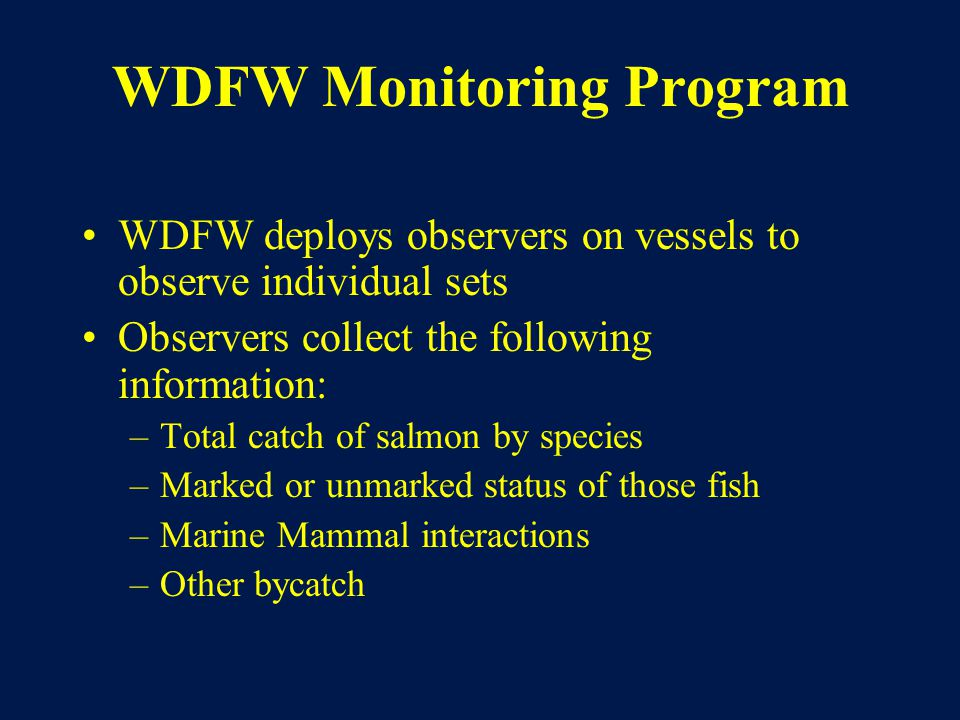 WDFW Monitoring Program WDFW deploys observers on vessels to observe individual sets Observers collect the following information: –Total catch of salmon by species –Marked or unmarked status of those fish –Marine Mammal interactions –Other bycatch