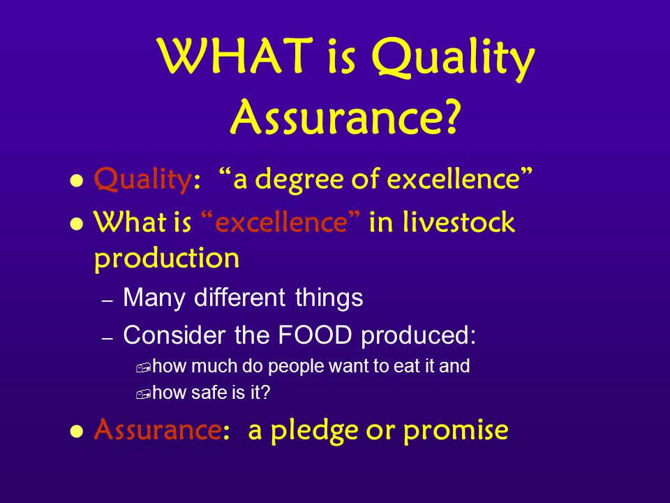 WHAT is Quality Assurance.