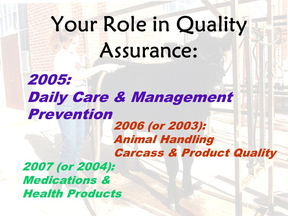 21 Your Role in Quality Assurance: 2006 (or 2003): Animal Handling Carcass & Product Quality 2005: Daily Care & Management Prevention 2007 (or 2004): Medications & Health Products