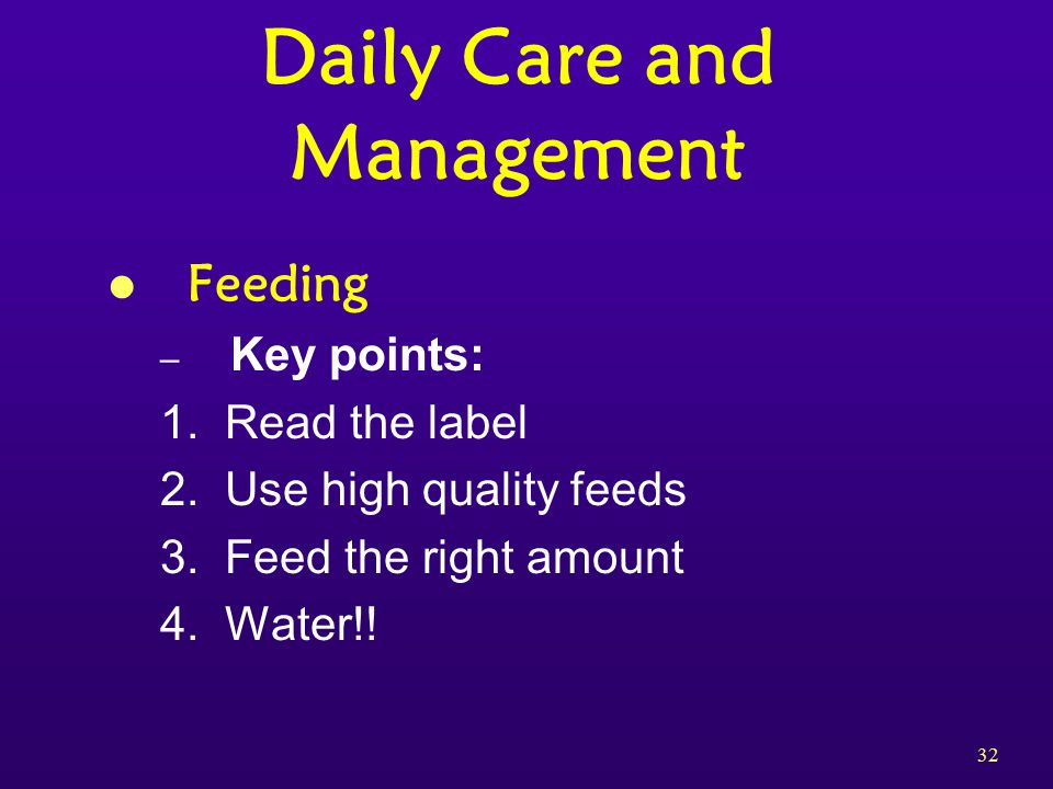 32 Daily Care and Management l Feeding – Key points: 1.
