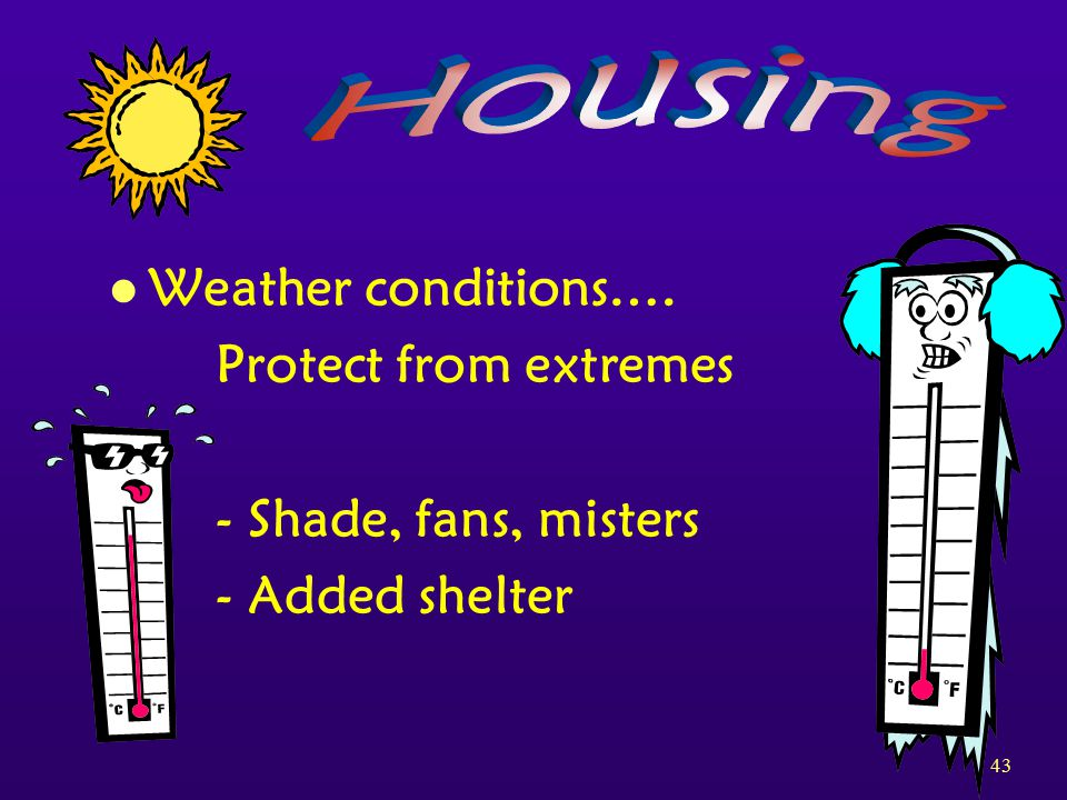 43 l Weather conditions…. Protect from extremes - Shade, fans, misters - Added shelter