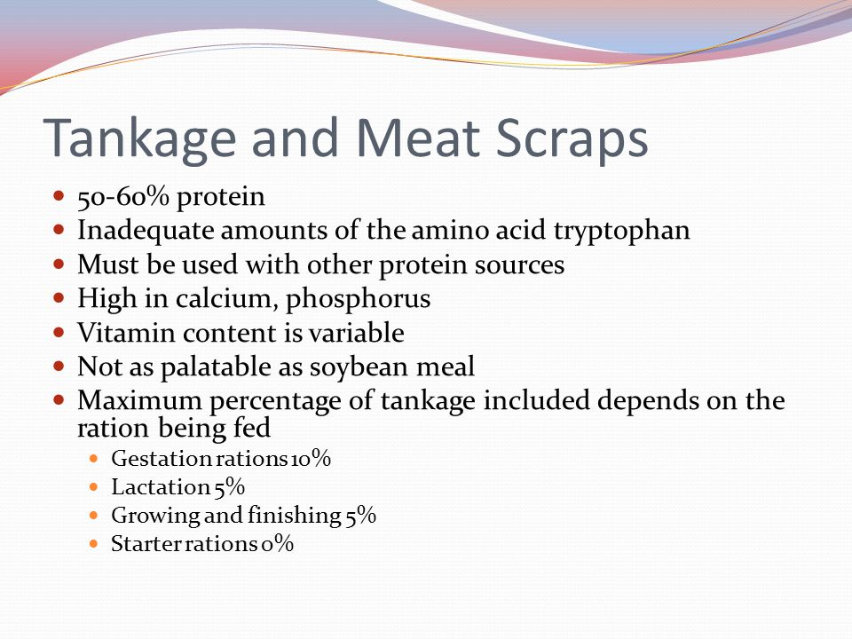 Tankage and Meat Scraps 50-60% protein Inadequate amounts of the amino acid tryptophan Must be used with other protein sources High in calcium, phosph
