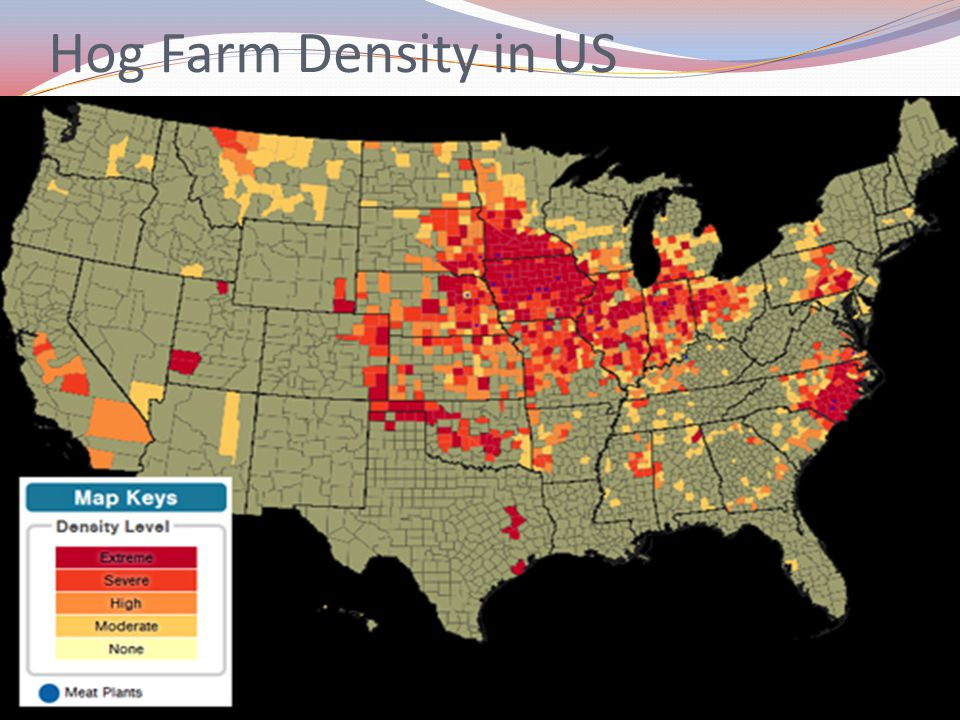 Hog Farm Density in US