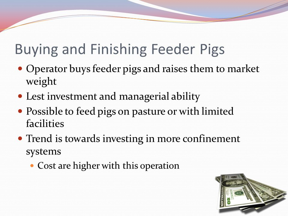 Buying and Finishing Feeder Pigs Operator buys feeder pigs and raises them to market weight Lest investment and managerial ability Possible to feed pi