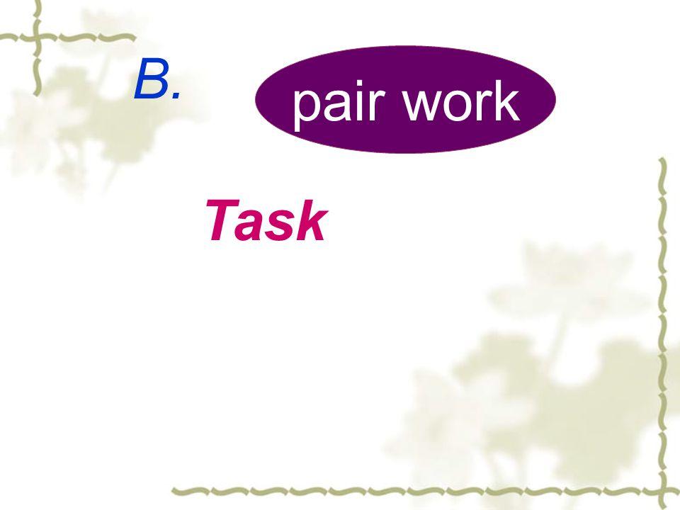 B. pair work Task