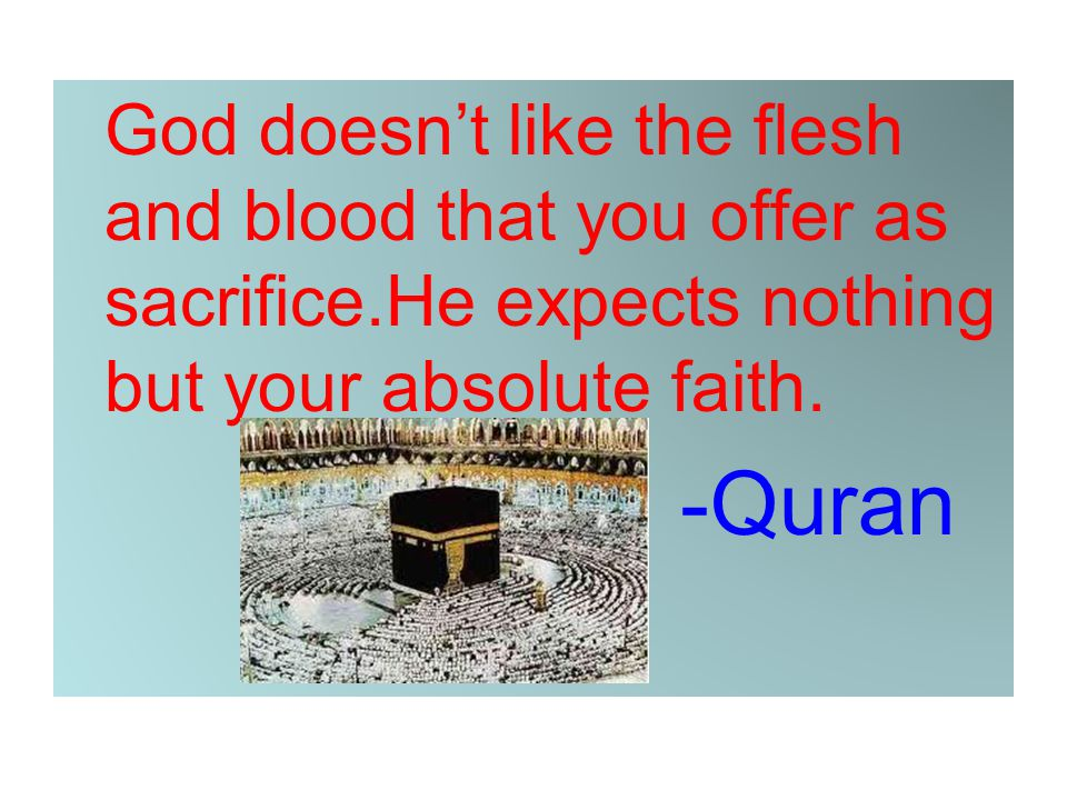 God doesn't like the flesh and blood that you offer as sacrifice.He expects nothing but your absolute faith. -Quran