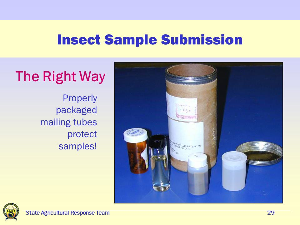 State Agricultural Response Team28 Insect Sample Submission The Wrong Way