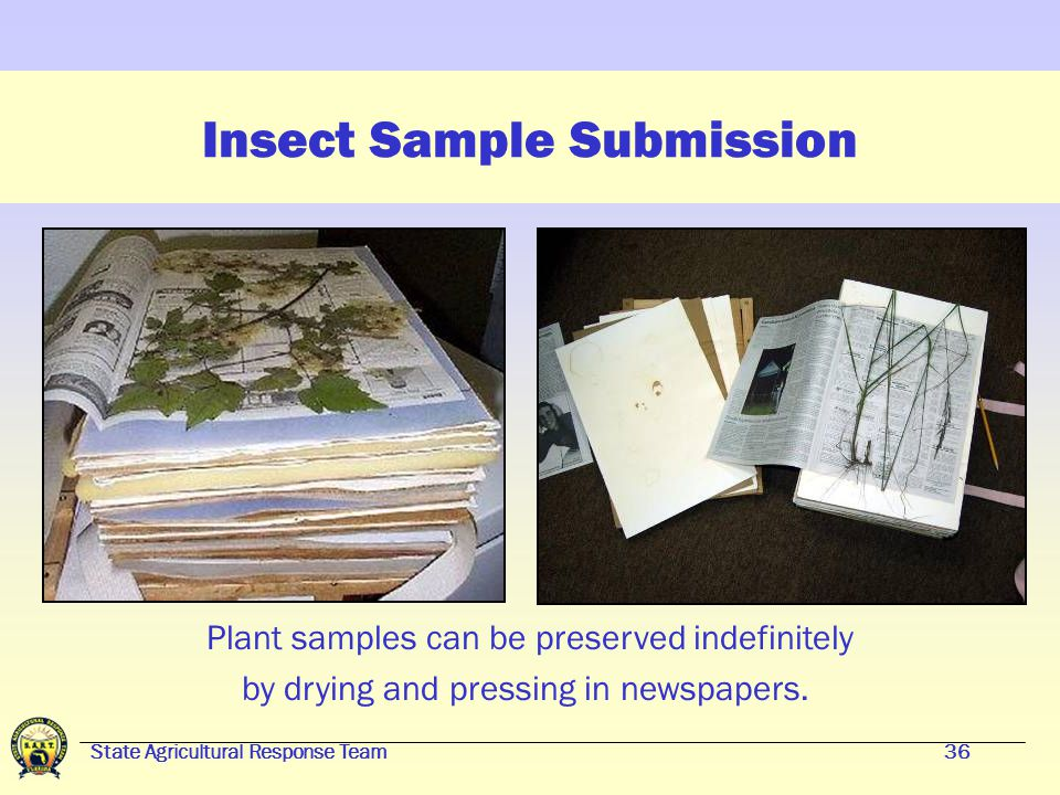 State Agricultural Response Team35 Insect Sample Submission If the insect pest infestation is totally unknown, collect plant samples to aid identifica