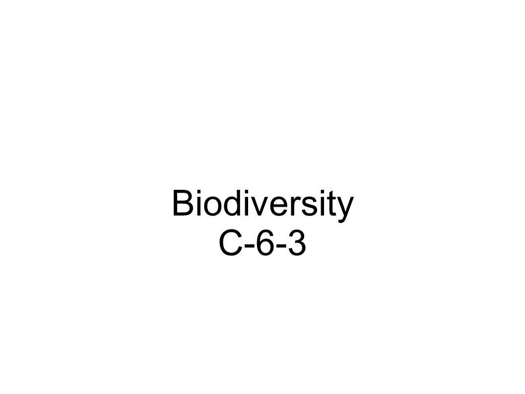 Biodiversity C-6-3