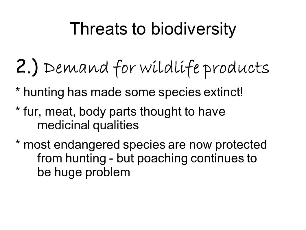 Threats to biodiversity 2.) Demand for wildlife products * hunting has made some species extinct! * fur, meat, body parts thought to have medicinal qu