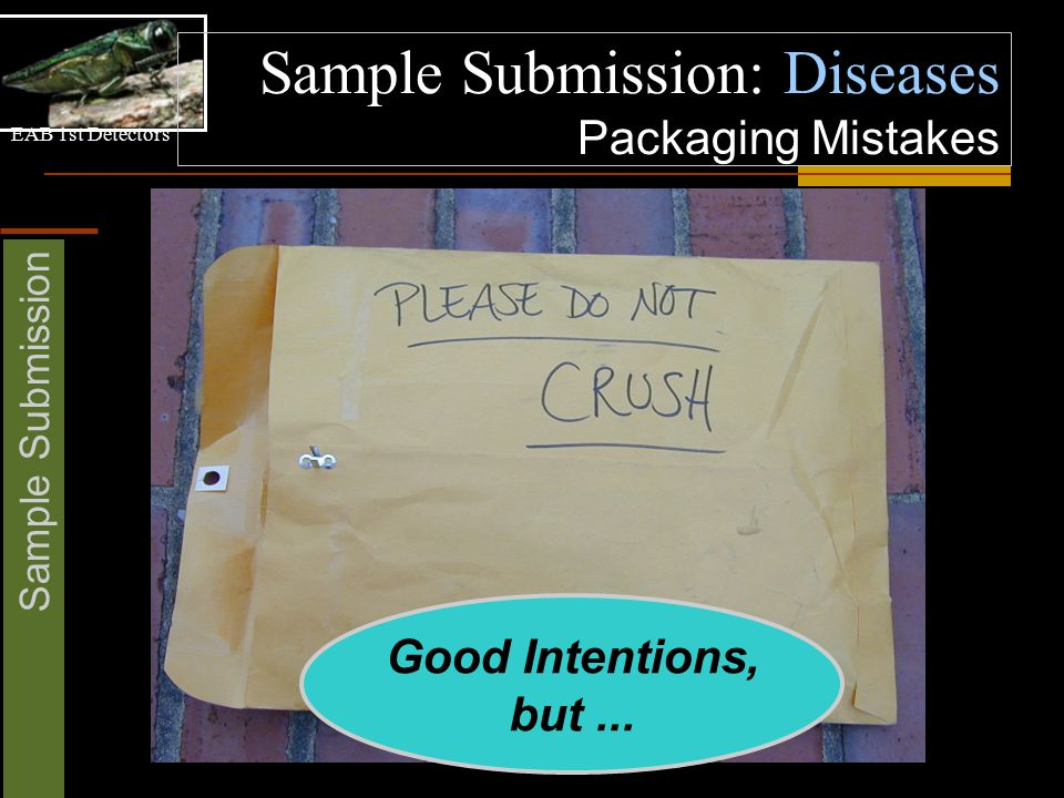 EAB 1st Detectors Sample Submission Sample Submission: Diseases Packaging Mistakes Good Intentions, but...
