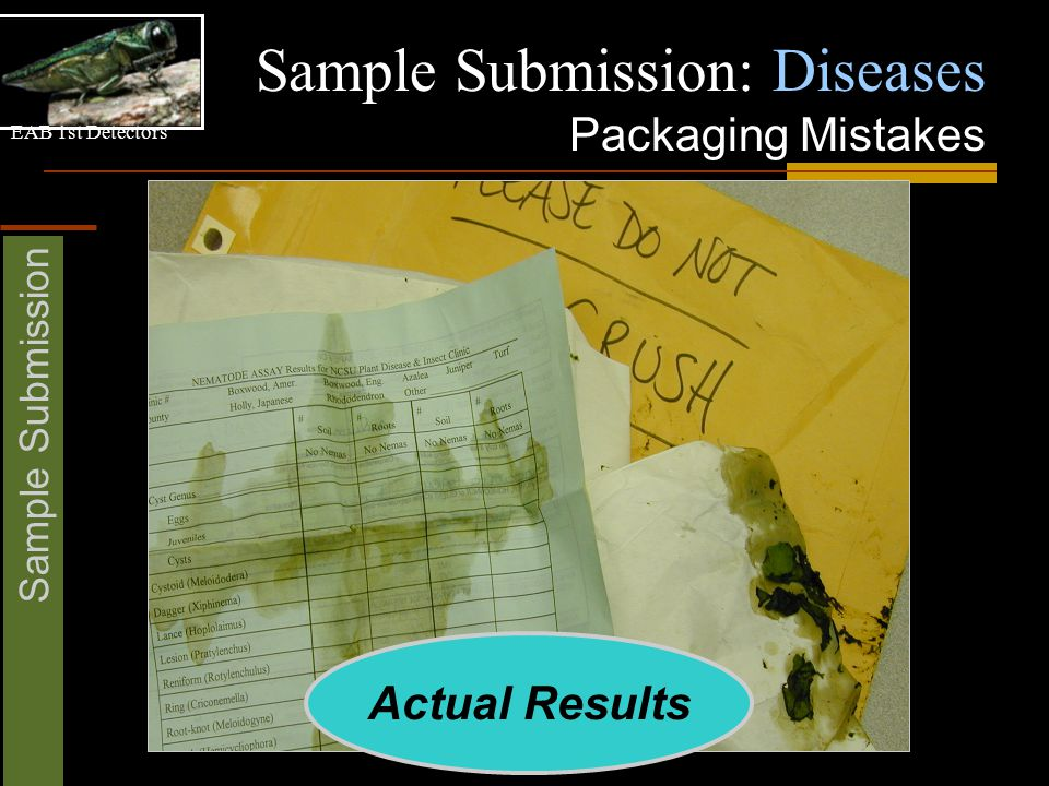 EAB 1st Detectors Sample Submission Sample Submission: Diseases Packaging Mistakes Actual Results