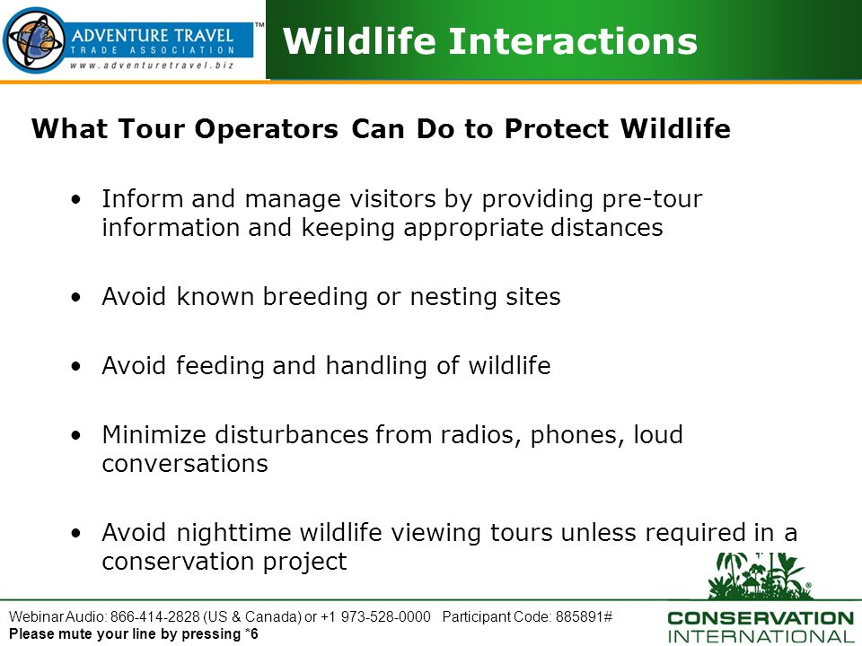 Webinar Audio: 866-414-2828 (US & Canada) or +1 973-528-0000 Participant Code: 885891# Please mute your line by pressing *6 Wildlife Interactions What Tour Operators Can Do to Protect Wildlife Inform and manage visitors by providing pre-tour information and keeping appropriate distances Avoid known breeding or nesting sites Avoid feeding and handling of wildlife Minimize disturbances from radios, phones, loud conversations Avoid nighttime wildlife viewing tours unless required in a conservation project