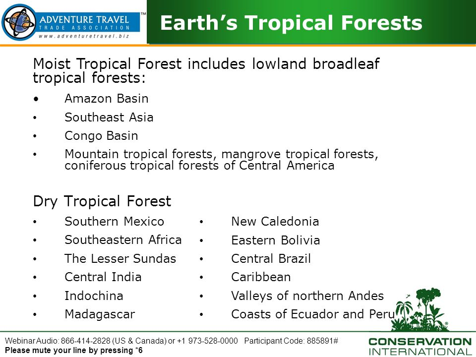 Webinar Audio: 866-414-2828 (US & Canada) or +1 973-528-0000 Participant Code: 885891# Please mute your line by pressing *6 Tropical Forests and Climate Change Why Should I Care.