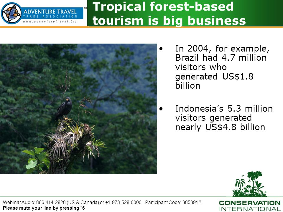 Webinar Audio: 866-414-2828 (US & Canada) or +1 973-528-0000 Participant Code: 885891# Please mute your line by pressing *6 Visitor Education and Messaging Use the tour to share information about: –Different tropical forest environments –Wildlife –Interdependence of animals and nature –Evolutionary history of the region –Use naturalist guides Why interpretation is important: –Adds value to the tour experience –Promotes thoughtful visitor behavior –Differentiates your product in the market –Enhances corporate reputation as a knowledgeable, professional operator –Attracts higher yield customers Learning is a key aspect of adventure tours; make interpretation a priority.