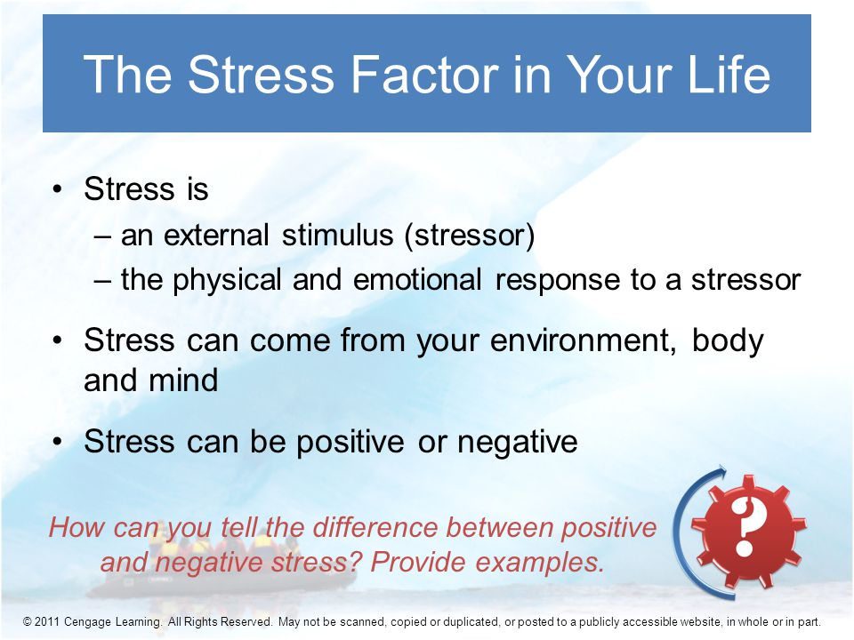 Stress is –an external stimulus (stressor) –the physical and emotional response to a stressor Stress can come from your environment, body and mind Stress can be positive or negative The Stress Factor in Your Life How can you tell the difference between positive and negative stress.