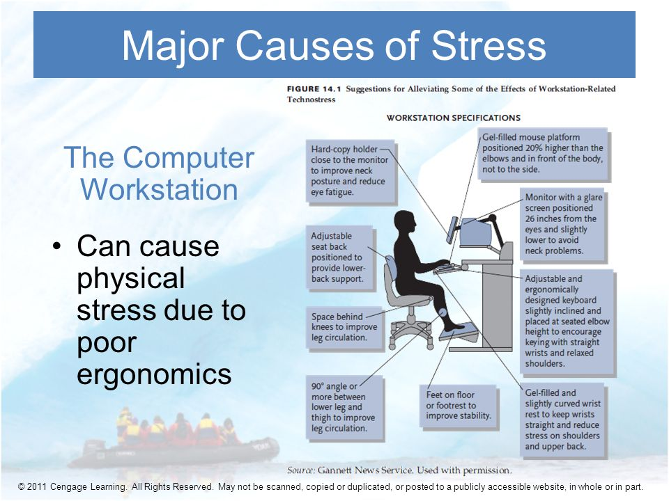 The Computer Workstation Can cause physical stress due to poor ergonomics Major Causes of Stress © 2011 Cengage Learning.