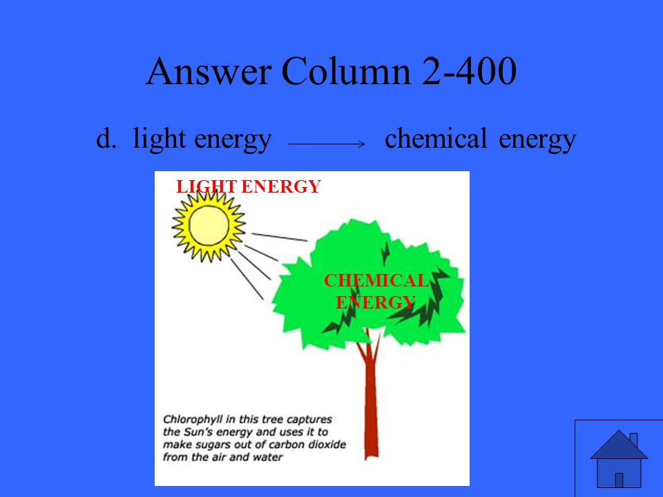 Answer Column 2-400 d. light energy chemical energy CHEMICAL ENERGY LIGHT ENERGY