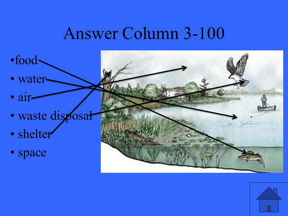 Answer Column 3-100 food water air waste disposal shelter space