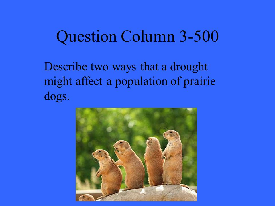 Question Column 3-500 Describe two ways that a drought might affect a population of prairie dogs.