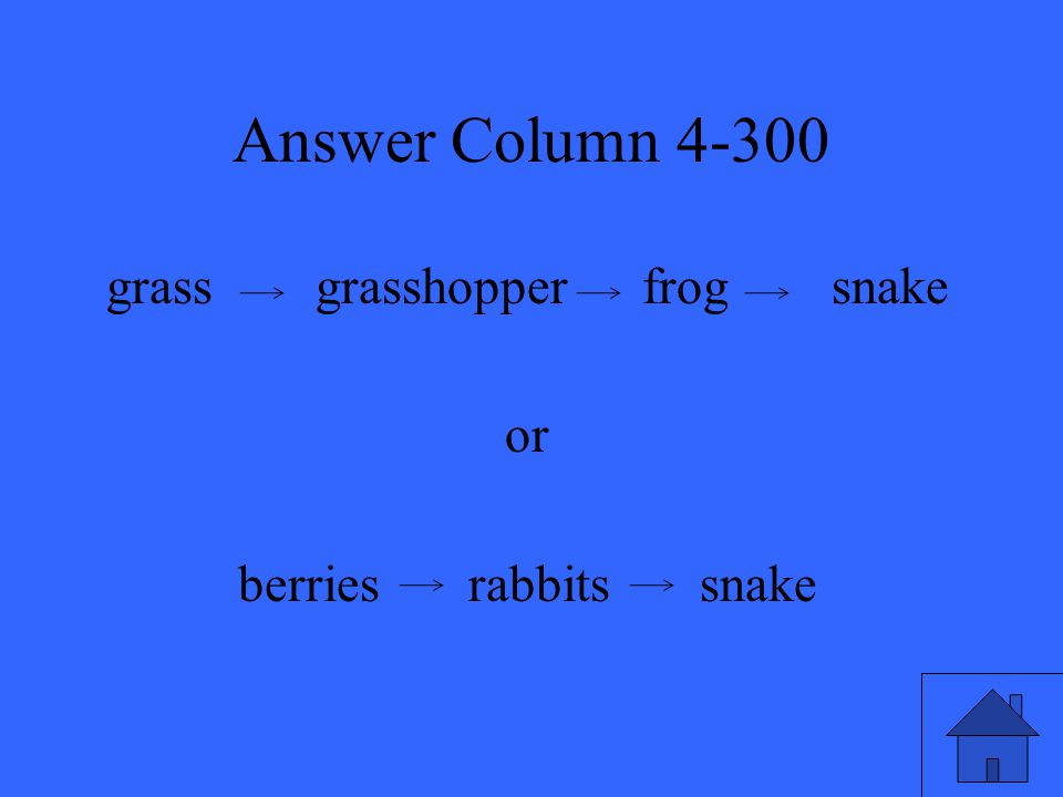 Answer Column 4-300 grass grasshopper frog snake or berries rabbits snake