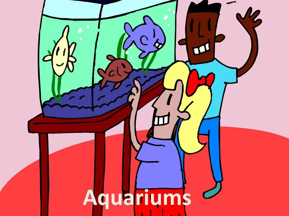 I.So You Want An Aquarium A.