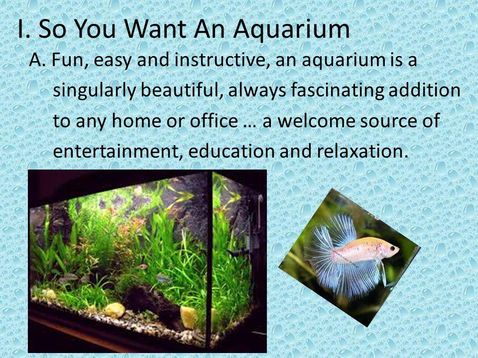 I. So You Want An Aquarium A.