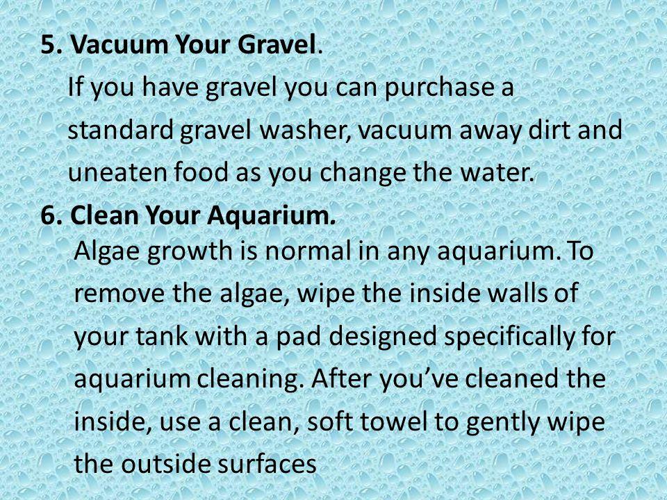 5. Vacuum Your Gravel.