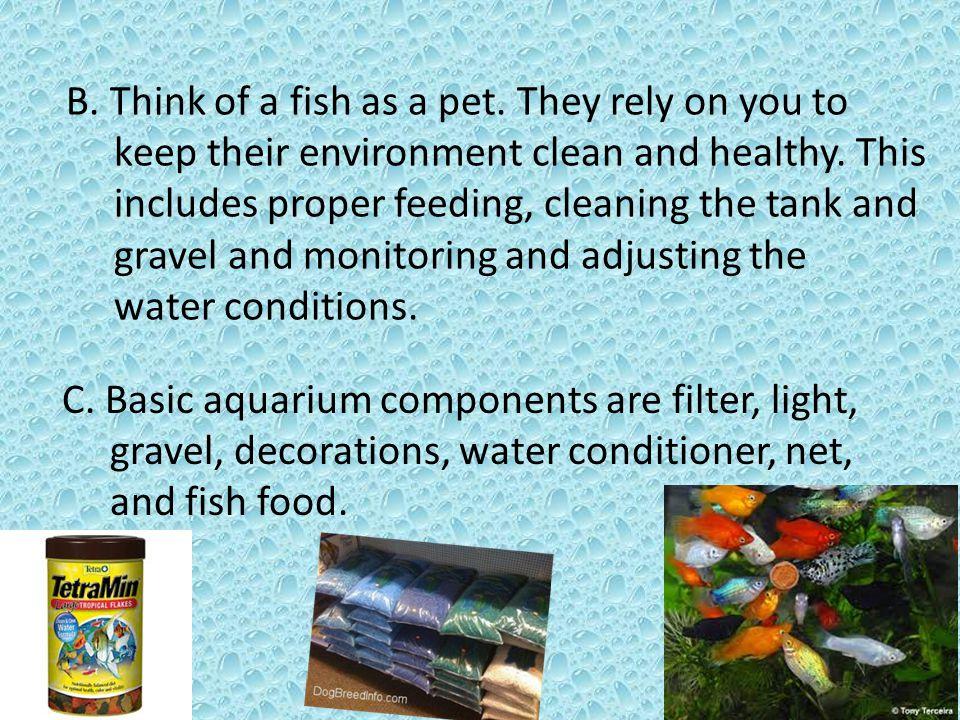 II.Setting Up Your Aquarium A.