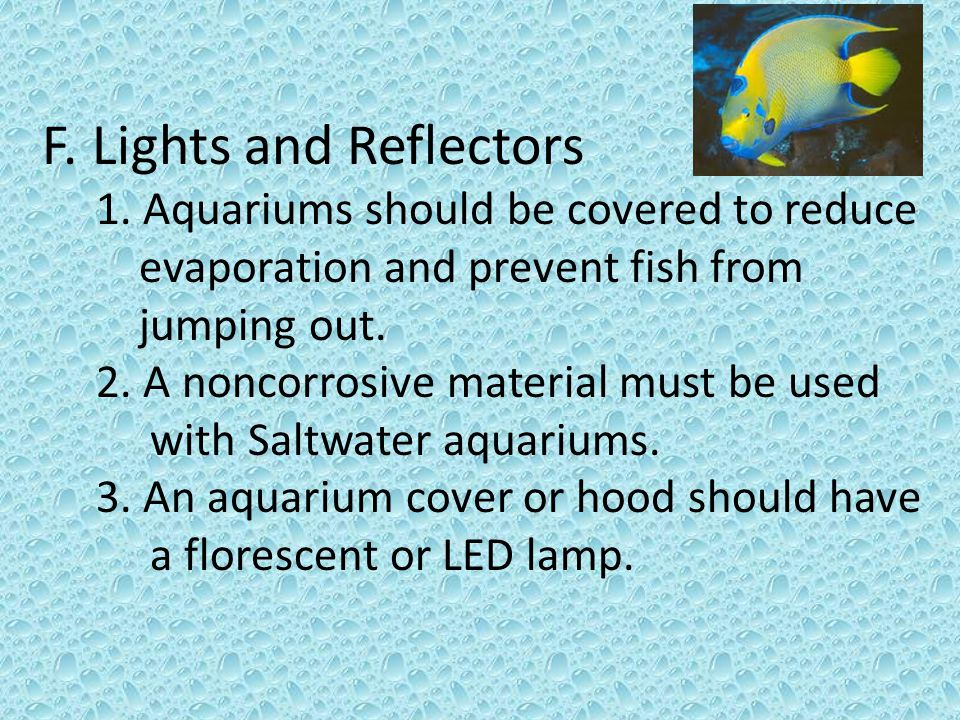 III.Preparing the Water- Three Methods of Water Cycling for Aquariums A.