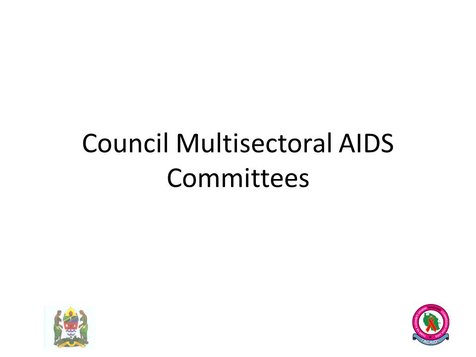 Council Multisectoral AIDS Committees