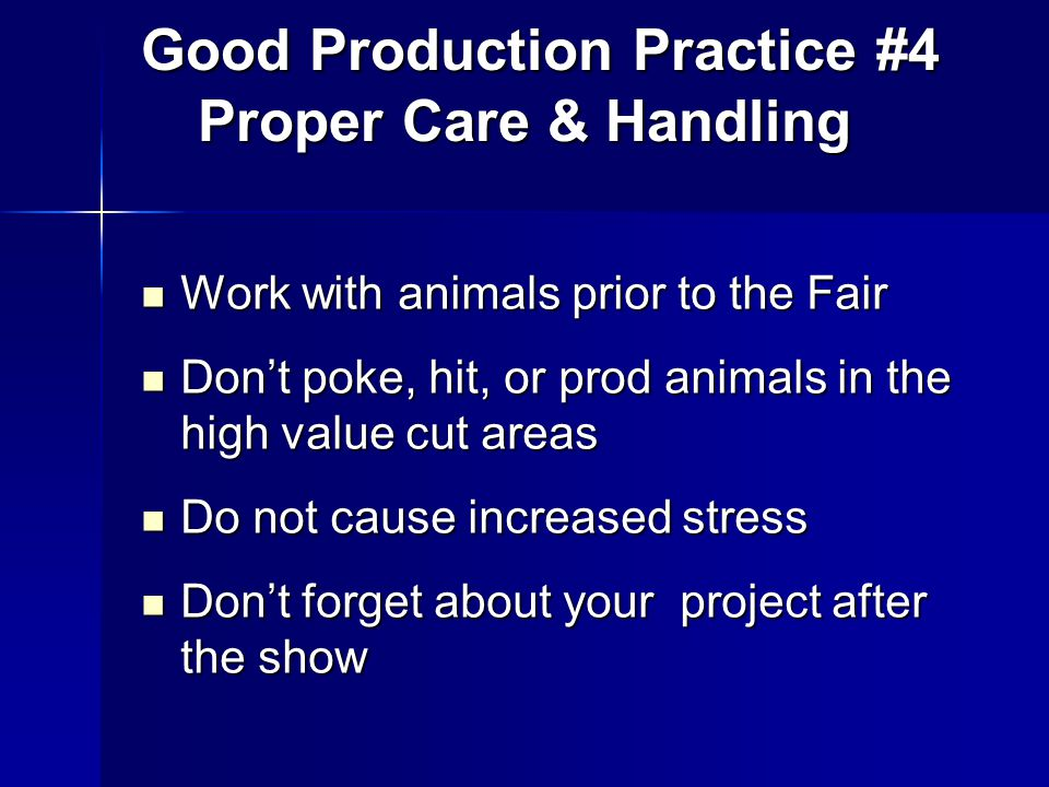 Work with animals prior to the Fair Work with animals prior to the Fair Don't poke, hit, or prod animals in the high value cut areas Don't poke, hit, or prod animals in the high value cut areas Do not cause increased stress Do not cause increased stress Don't forget about your project after the show Don't forget about your project after the show Good Production Practice #4 Proper Care & Handling Good Production Practice #4 Proper Care & Handling